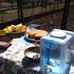 Catlin project food